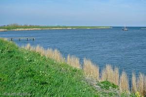 waterlandse zeedijk bij kinselmeer